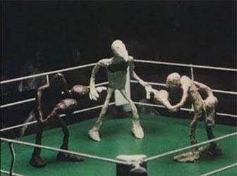 Боксеры